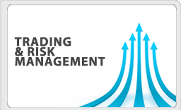 Trading and Risk Management